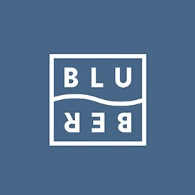 Bluber Corporate Image